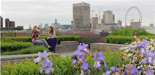 """伦敦第20届""""私家花园广场""""六月开放"""