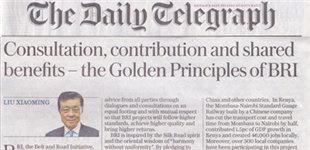 刘晓明:共商共建共享是一带一路的黄金法则
